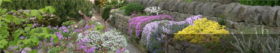 Slack Top Nurseries and Garden Gold medal winners. one of the UK's top 10 specialist growers of alpines
