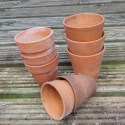 Clay alpine pots available for sale at the nursery